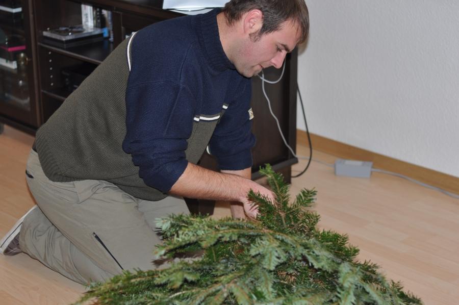 Rund um den Weihnachtsbaum