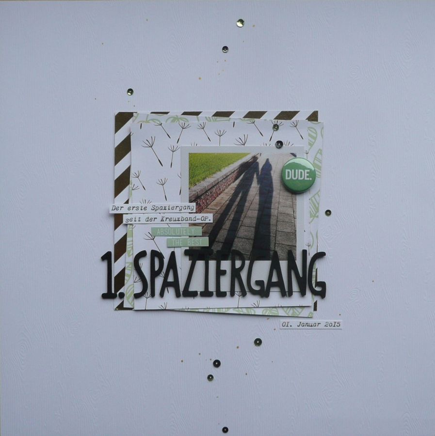 Layout2015ErsterSpaziergang